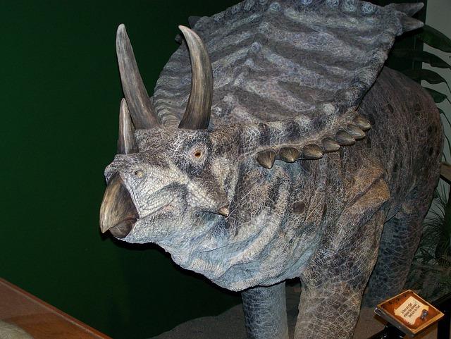 Dinosaur, Triceratops, Reptile, Prehistoric, Dino