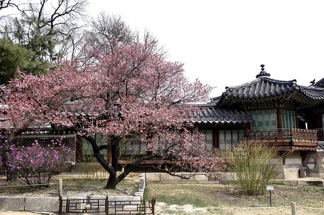 Republic Of Korea, Traditional, Forbidden City