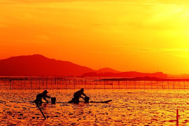 Republic Of Korea, Glow, Suncheon Bay, Sunset