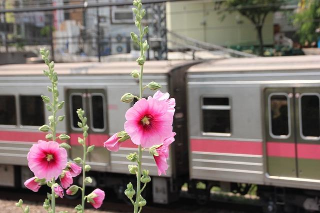 Train, Subway, Republic Of Korea, Korea