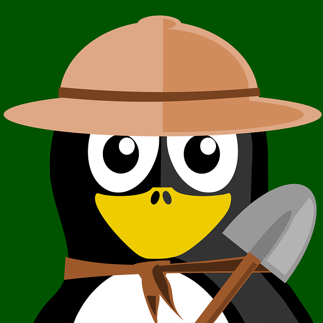 Researcher, Tux, Inkscape, Vector, Penguin, Animal
