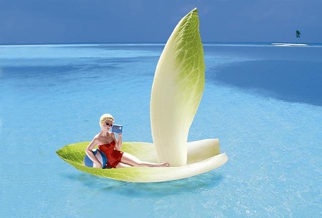 Vegetables, Chicory, Boat, Resort, Marin