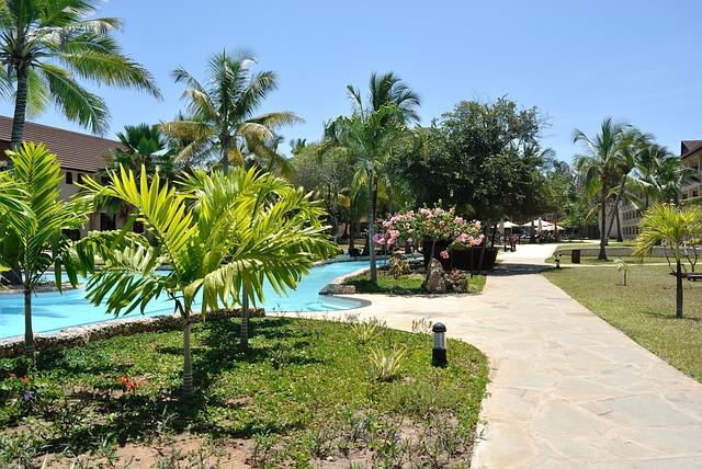Resort, Holiday, Swimming Pool, Pool, Water, Garden