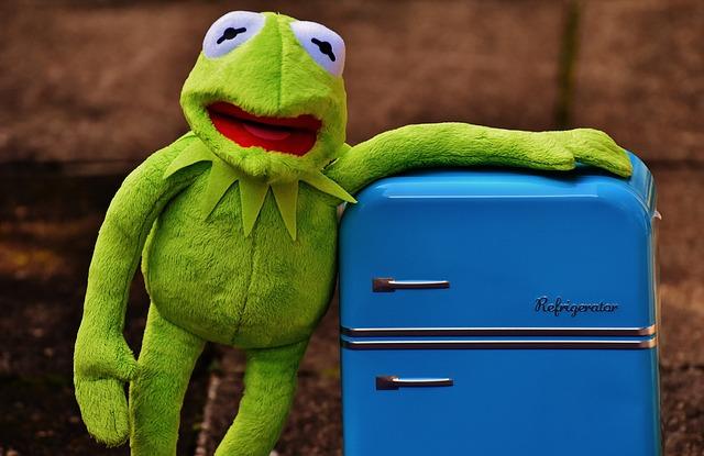 Kermit, Frog, Refrigerator, Funny, Retro, Green, Toys