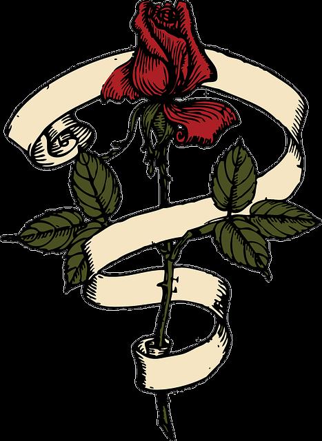 Rose, Red, Flower, Ribbon, Stem, Plant, Leaves, Green