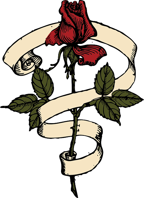 Rose, Red, Flower, Ribbon, Stem, Plant, Leaves, Green