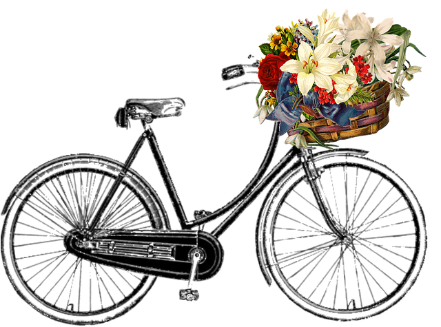 Free Photo Hipster Vintage Bicycle Style Old Bike Retro Max Pixel