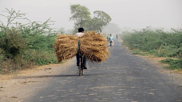 India, Travel, Transportation, Men, Fuel, Rider, Bike