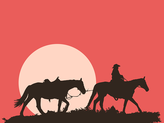 Man And Horses, Sunset, Silhouette, Rider, Landscape