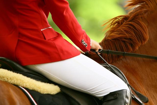 Horse, Rider, Races, Horse Riding, Seat, Detail, Mane