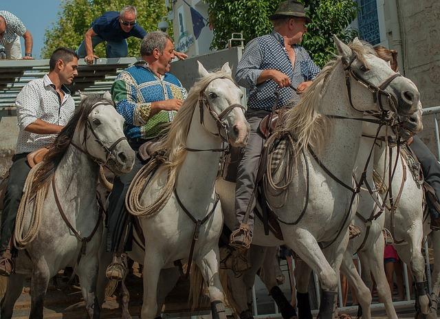 Camargue, Gardians, Horses, Riders, Feria