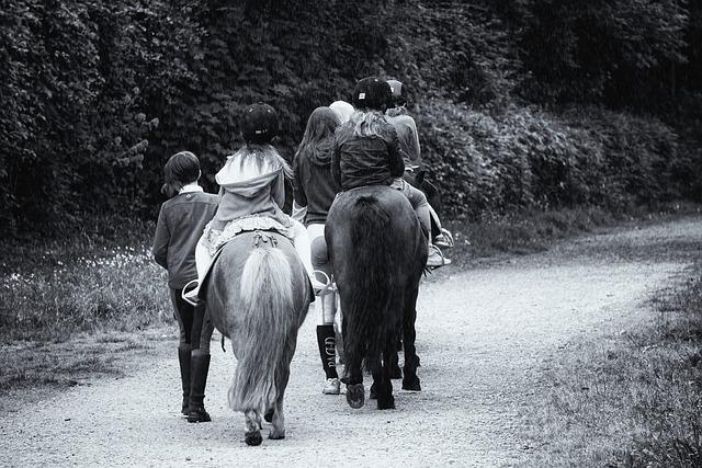 Promenade, Horses, Riders, Ponies, Horseback Riding