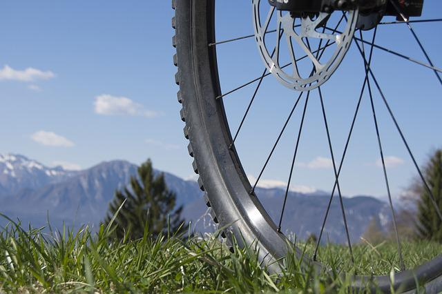 Wheel, Spokes, Close, Rim, Mature, Mountain Bike, Pneu