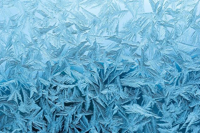 Rime, Rainy-d Flower, Frost, Frozen, Icy, Pakkaskukka