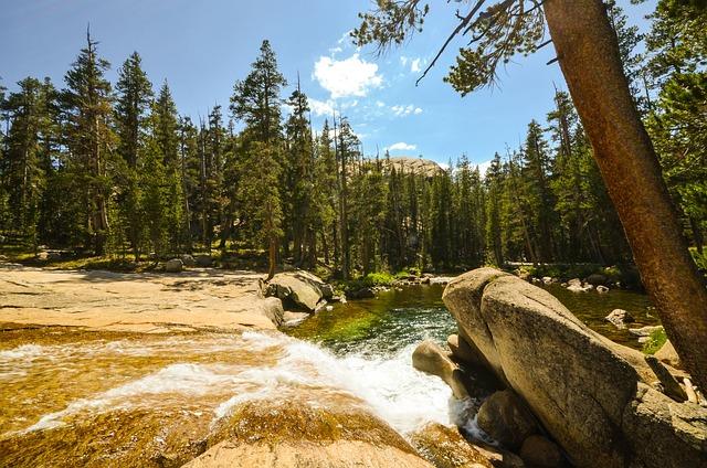Usa, America, California, Nature, Yosemite, River