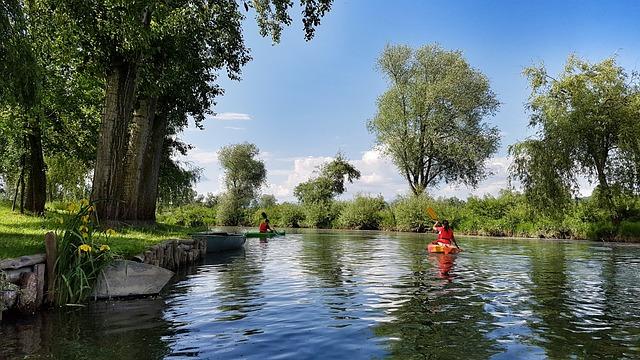 Canoeing, Kayak, Ljubljana, Slovenia, River, Nature