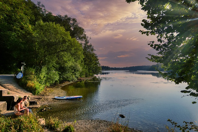 River, Reservoir, Forest, Trees, Water, Nature, Bank