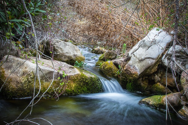 Body Of Water, Nature, River, Wood, Waterfall, Leaf