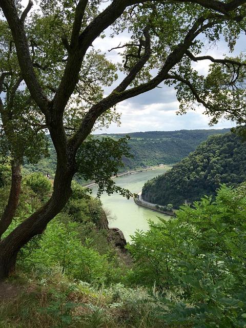Rhine, River Landscape, River, Landscapes, Nature