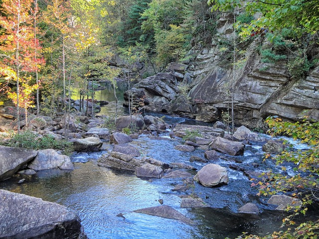 Georgia, Tallulah Gorge, River, Stream, Water, Forest