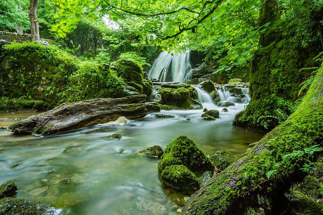 Janet's Foss, Malham, Yorkshire, Waterfall, River
