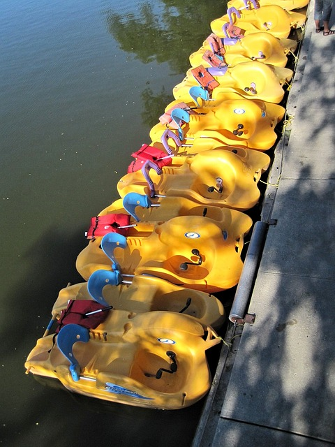 Paddle Boats, River's Edge, Ontario, Canada