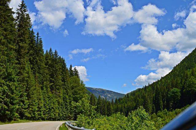 Road 66a, Mountain, Romania, Woods