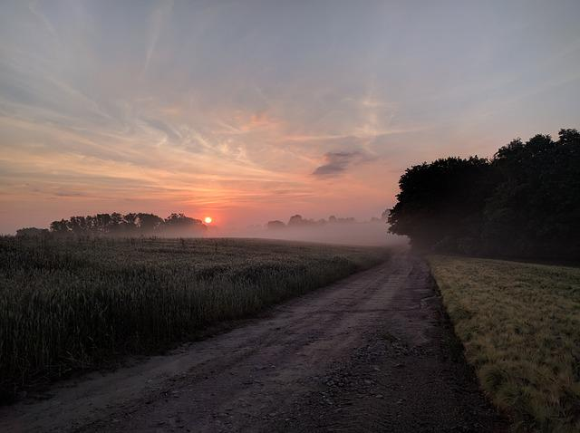 Countryside, Dirt Road, Fields, Fog, Road, Sky, Sun