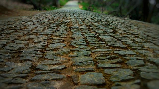 Lane, Road