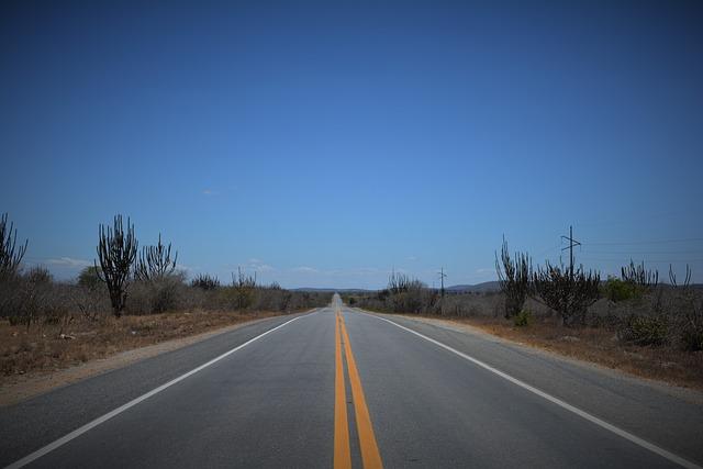 Backcountry, Road, Caatinga, Brazil, Stright