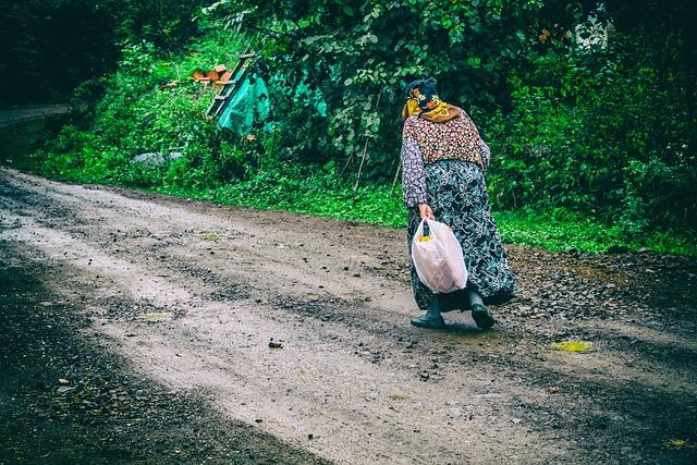 Peasant, Army, Turkey, Old, Woman, Walking, Road