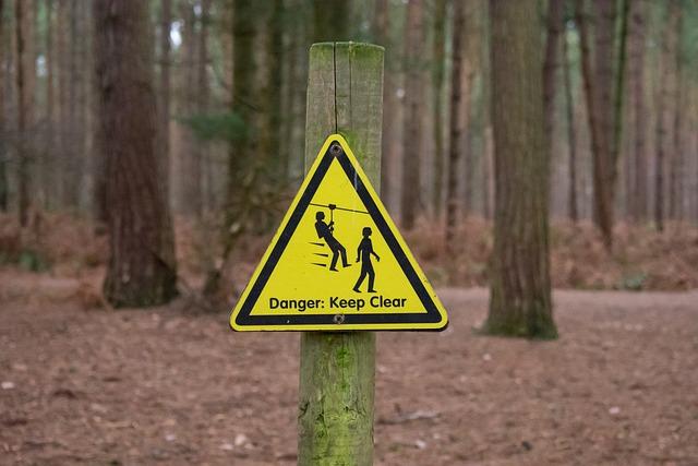 Road, Wood, Warning, Danger, Nature, Guidance, Safety