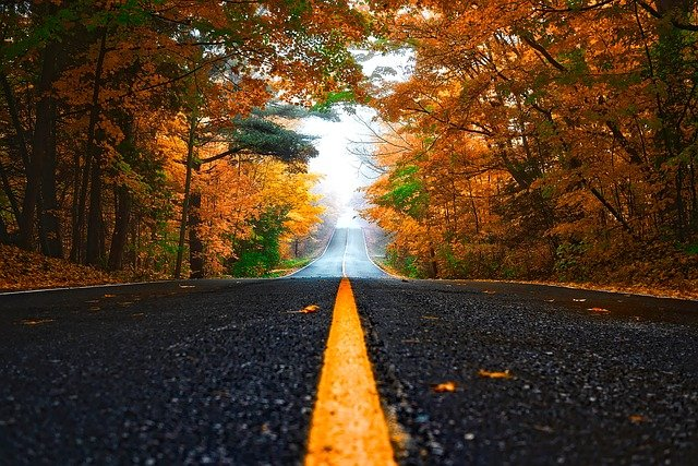 Autumn, Street, Lane, Fall, Forest, Trees, Woods, Road