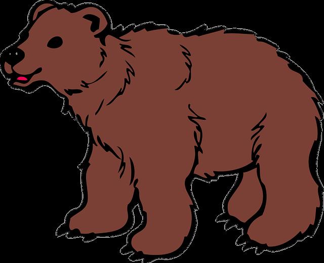 Animal, Bear, Brown, Cub, Cute, Hairy, Mammal, Roar