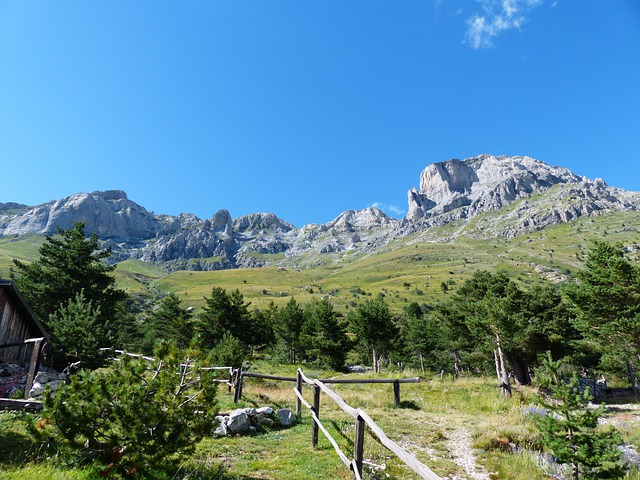 Rocce Del Manco, Rocca Dei Campinili, La Balena