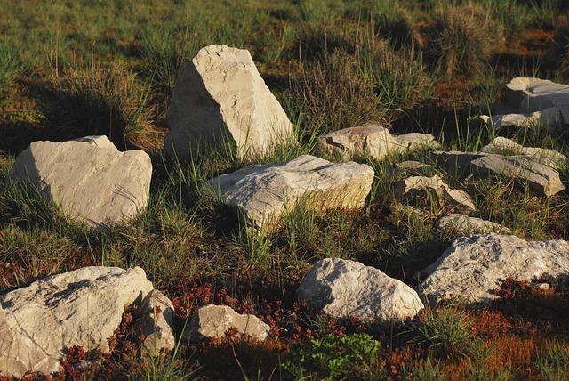 Rocks, The Stones, Nature, Dry, Summer, Rock Gardens