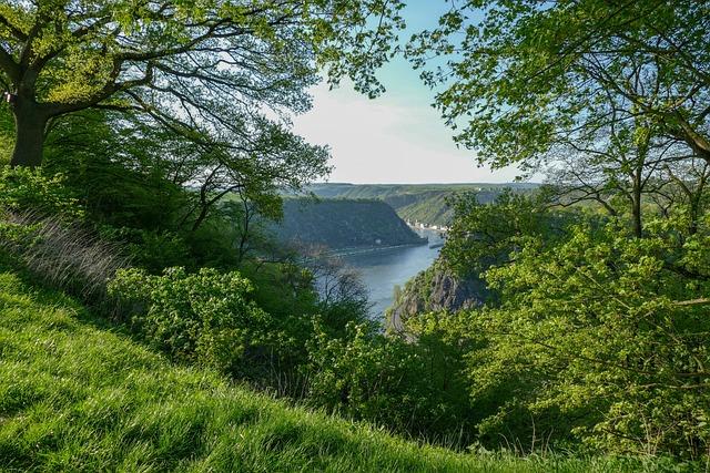 Loreley View Urbar, Loreley, Rock, Sage, River, Rhine