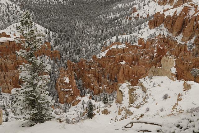 Bryce, Canyon, National, Park, Utah, Nature, Rock, Red