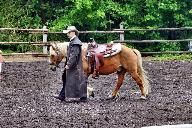 Rodeo, Ride, Horse, Reiter