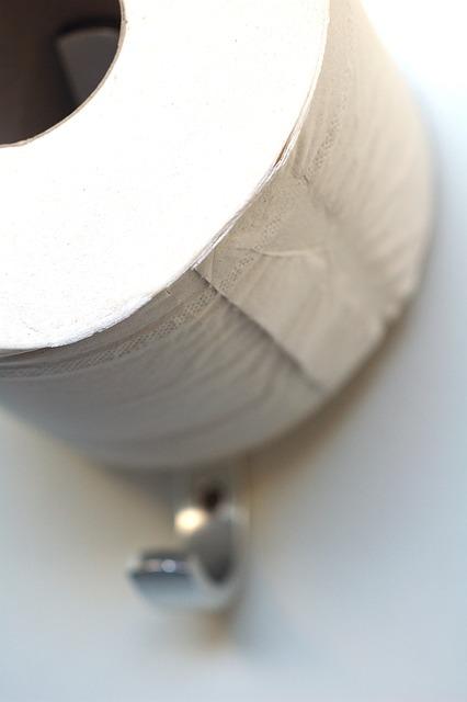 Toilet Paper, Role, Paper, Toilet, Hygiene