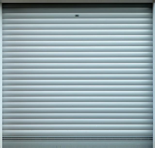Roll Up Door, Goal, Garage, Garage Door, Auto