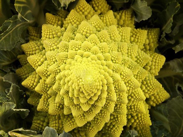 Romanescu, Romanesco, Vegetable, Cauliflower, Fractal