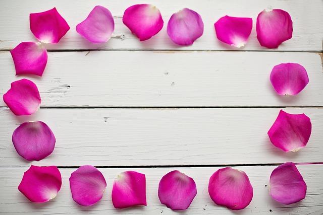 Rose Petals, Border, Frame, Floral, Romantic, Flower