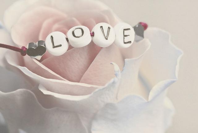 Love, Rose, Flower, Feelings, Romantic, Luck, Mood