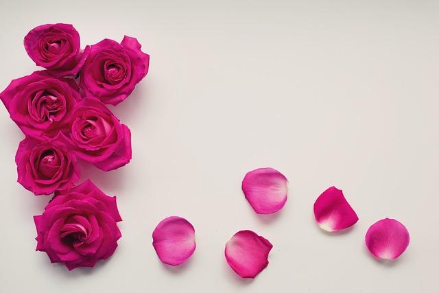Roses, Petals, Floral, Romantic, Love, Romance