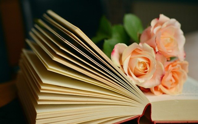 Book, Book Pages, Read, Roses, Romantic, Literature