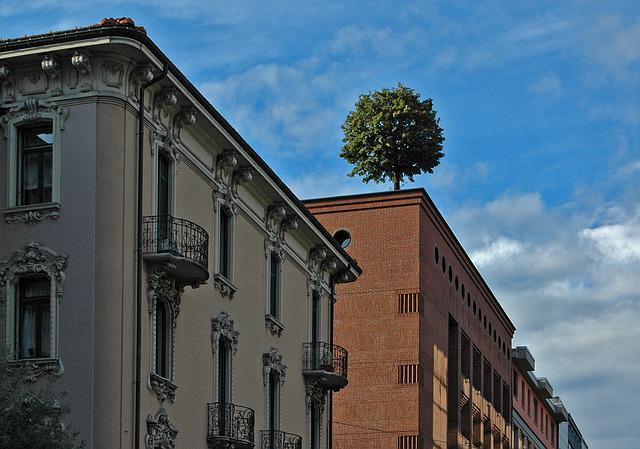 Lugano, Tree, City, Homes, Clouds, Roof, Building