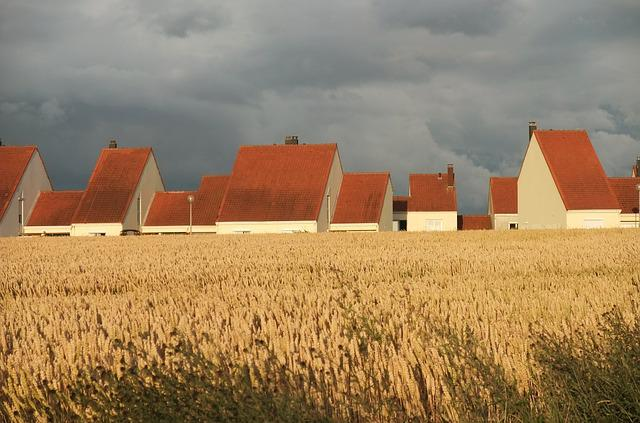 Roof, Roofs, Cottages, White, France, Wheat, Field