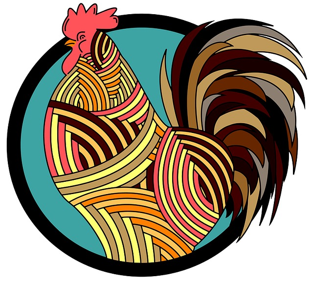 Rooster, Poultry, Animal, Farm, Agriculture, Bird