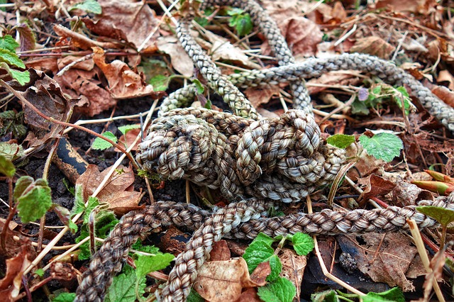 Rope, Knot, Coil, Tied, Twisted, Attach, Tie, Fasten